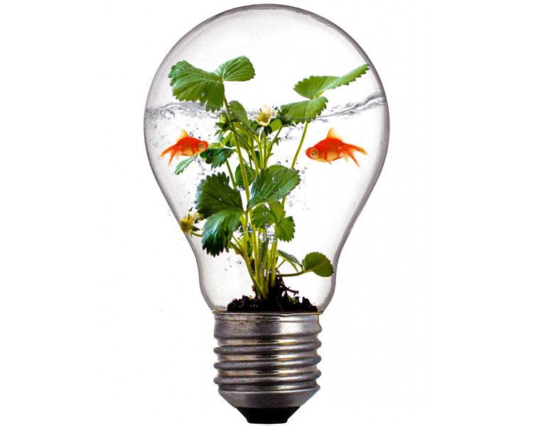环境评测行业项目管理系统